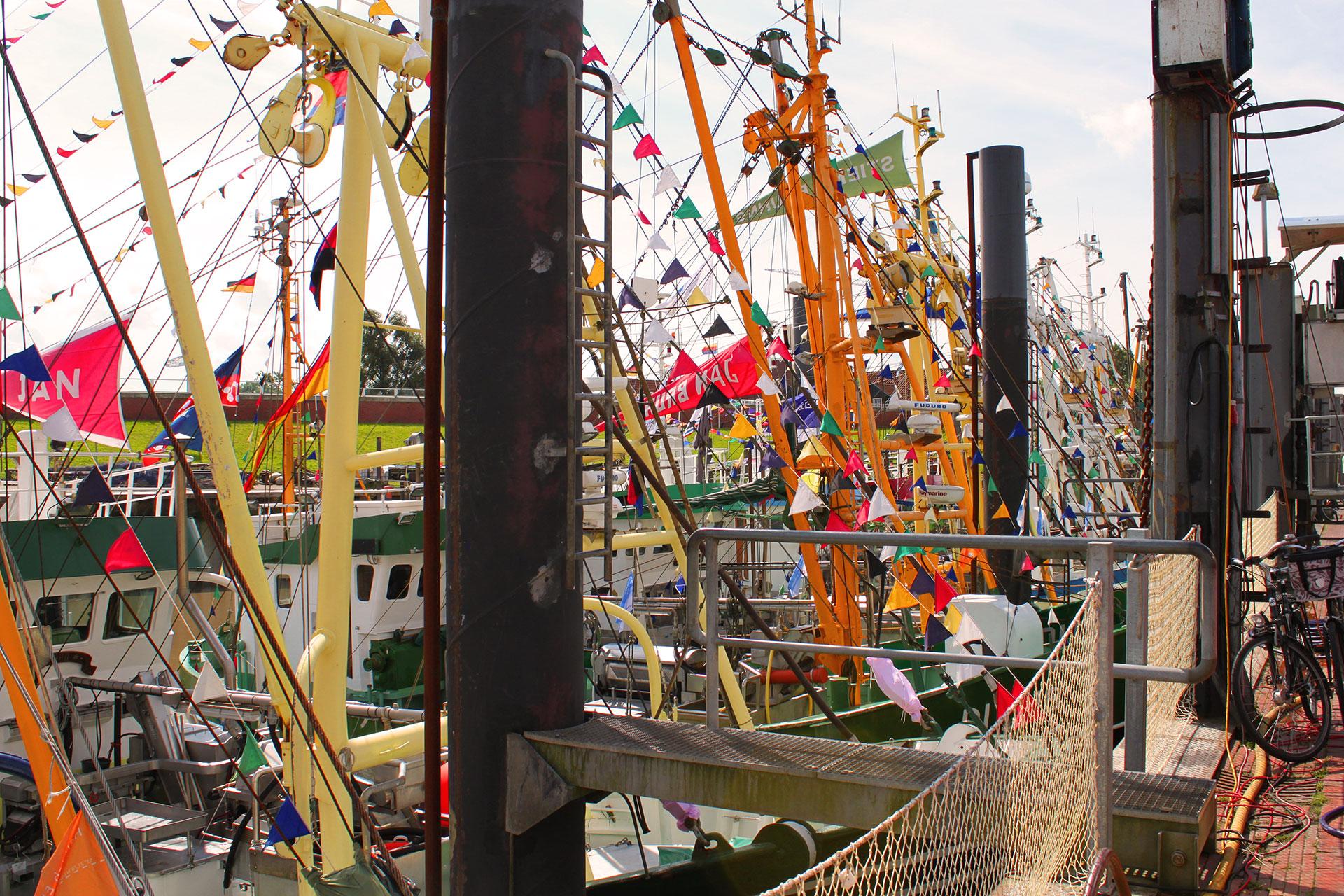Hafen_Fest